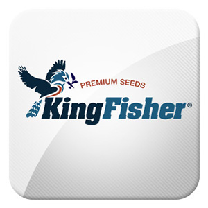 KingFisher Seeds